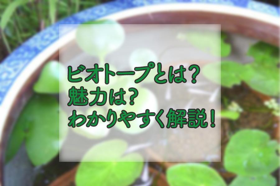 ビオトープとは何か?魅力と一緒にわかりやすく解説!